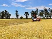 Vietnam y Mozambique poseen alto potencial en cooperación agrícola