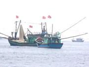 Japón respalda al sector pesquero de Vietnam