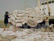 Gran potencial para exportaciones de arroz de Vietnam a Singapur