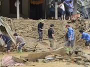 Provincias norvietnamitas despliegan medidas en respuesta a graves inundaciones