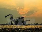 Indonesia ofrece asistencia financiera millonaria para desarrollo frutícola