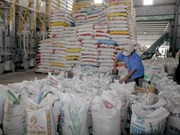 Exportación de arroz vietnamita prevé alcanzar 5,2 millones de toneladas en 2017