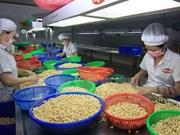 Actividades de comercio exterior de Vietnam mantienen su curva ascendente