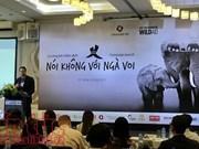 Vietnam lanza campaña de concienciación contra comercio de colmillos de elefantes