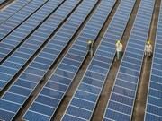 Vietnam dispone de grandes potencialidades para desarrollo de energías renovables