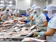 Vietnam intensifica control del proceso de exportación de bagres a Estados Unidos