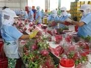 Vietnam y Laos impulsan cooperación en agricultura