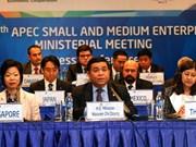 APEC aprueba importantes documentos sobre desarrollo de PyMEs