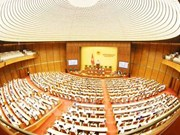 Parlamento vietnamita examina informes sobre solución de denuncias y quejas