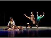 Inauguran en provincia de Ninh Binh festival internacional de danza 2017