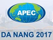 Ciudad vietnamita de Da Nang lista para la Semana de Alto Nivel del APEC 2017