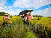 Vietnam y Alemania cooperan en formación profesional de agricultores