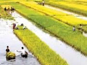 Delta del Mekong promueve productos locales