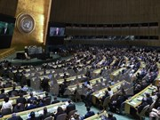 Vietnam presenta ante ONU recomendaciones para mitigación de secuelas de desastres naturales