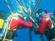 Avería de cable submarino afecta internet en Vietnam