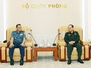 Vietnam e Indonesia cooperan en estudio de estrategia de defensa