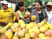 China intensifica importación de productos agrícolas vietnamitas