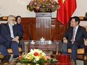 Vietnam, socio importante de Irán en Asia
