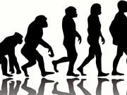 Indonesia establecerá centro de investigación de la evolución humana