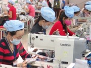 Vietnam y Brasil disponen de potencial de cooperación en agricultura y turismo
