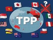 Jefes de delegaciones de negociaciones del TPP se reúnen en Japón