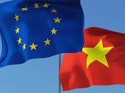 Vietnam se prepara para la entrada en vigencia del TLC con la UE