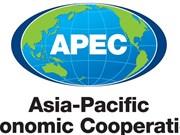 Rusia apoya prioridades de APEC 2017 propuestas por Vietnam