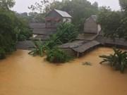 Vicepremier vietnamita orienta trabajos de recuperación tras el paso del tifón Damrey