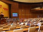 Asamblea Nacional de Vietnam aprueba la Ley de Silvicultura