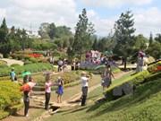 Entregan mapas turísticos gratuitos durante Festival de Flores de Da Lat