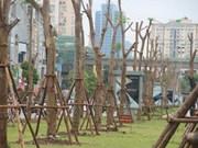 Celebrarán en Vietnam diversas actividades por centenario de independencia de Finlandia