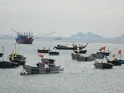 Desafíos y orientación de la conservación marina en Vietnam