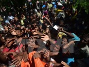 Refugiados  rohingyas siguen cruzando frontera a Bangladesh, según autoridades