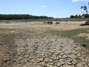 Urgen más recursos financieros para enfrentar cambio climático en Delta del Mekong de Vietnam