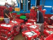 Esmerado Vietnam en resolver problemas relativos a pesca ilegal