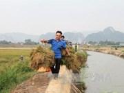 La mitad de las comunas en Vietnam será modernizada en 2020