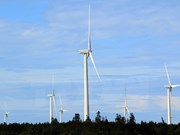 Australia propone suspender investigación sobre el dumping de torre de viento importada de Vietnam