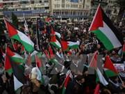 Palestina aboga por solución pacífica al conflicto con Israel