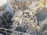 Sa Pa, mundo de las maravillas de invierno, extiende sus abrazos a turistas