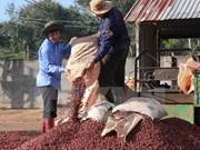 Empresas vietnamitas realizan inversiones millonarias en Laos y Camboya