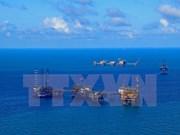 Grupo petrolero de Vietnam aumenta su reserva en 2018