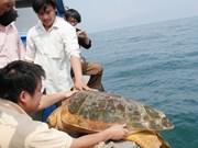 Liberan 27 animales salvajes en provincia vietnamita