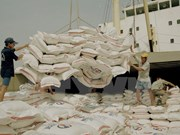 Indonesia importará arroz de Vietnam y Tailandia