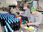 Quang Ninh despliega programa de estampillas electrónicas para productos locales