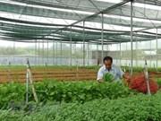Agricultura inteligente: oportunidades y desafíos para Vietnam