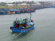Entidades vietnamitas se encargan de toda la transportación doméstica por vía marítima