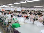 Dong Nai atrae más de 62 millones de dólares de inversión extranjera en enero