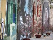 Hanoi inaugura calle de frescos Phung Hung en Casco antiguo