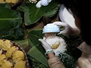 Registran en Laos alta demanda de platos tradicionales vietnamitas en vísperas de Tet