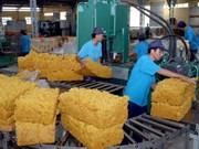 Grupo de Caucho de Vietnam busca mayores ganancias